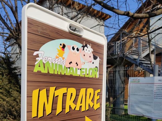 Навън с деца около Букурещ: Фермата за животни в град Пантелимон